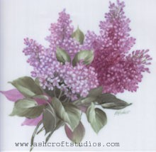 Lilacs for Square