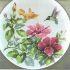 Hibiscus with Hummingbird #2