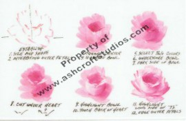 How to paint a baby rose