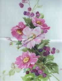 Wild Roses & Raspberries